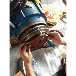 Kiểm tra bảo dưỡng sửa chữa Phanh nâng hạ của Palang Hàn quốc tại Hải Phòng